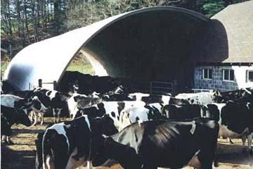 Steel Livestock and Cattle Barns