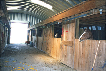 Strong and affordable steel buildings are perfect for protect your cattle and livestock